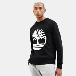 Core Tree Logo Pullover Hoodie
